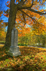 Stone (Kevin Tataryn) Tags: fall colors cemetery leaves nikon montreal hdr d90 photomatix 18135 notredamedesnieges