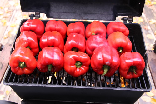 Freezing Roasted Red Peppers: Preserving the main harvest finally slows down Preserving Recipes Peppers (Bell) October Bell Pepper