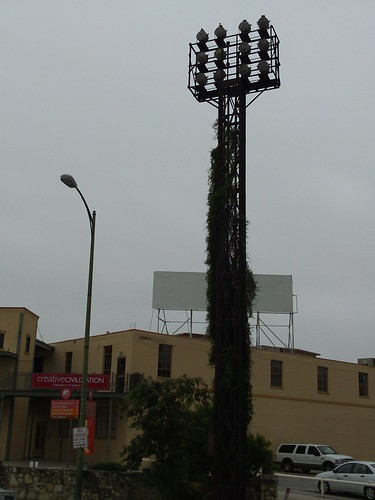 overgrown tower