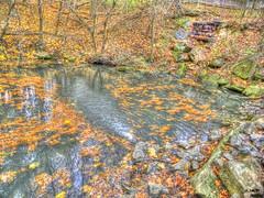 Game Preserve (Bill Maksim Photography) Tags: autumn trees lake fall rock pond rocks stream hdr maksim hdraward