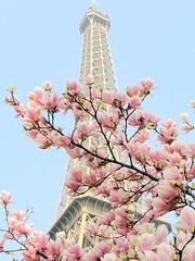 heavenly avalanche. (Sabina) Tags: sky paris france tower spring sony eiffel dsc h20