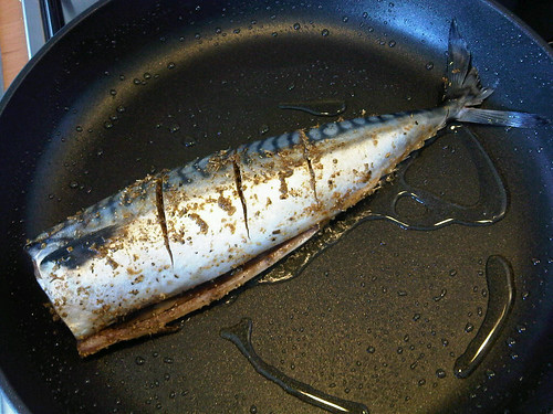 Cajun mackerel 2