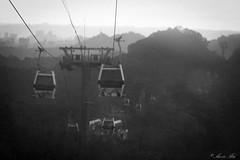 20110618-016 (Aaron Cat) Tags: blackandwhite bw macro canon eos taiwan gondola taipei usm   f28  maokong ef100mm  400d  maokonggondola aaronhsu