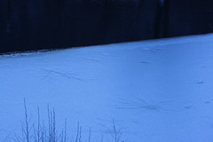 printing on ice (marco prete) Tags: lake ice lago tuscany toscana toskana pistoia ghiaccio valledelreno yourcountry