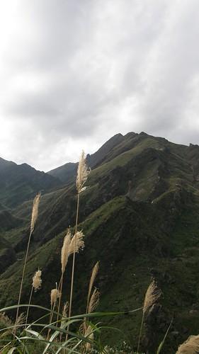 053.半平山稜線