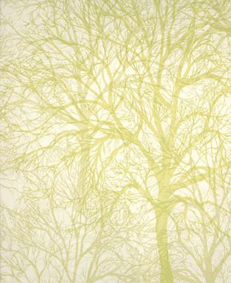 wallpaper modern. Modern wallpaper: Tree print