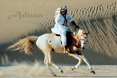 Qatar Earth .... Arab man riding a horse..........    *******     (Qatar Earth  ) Tags: horse man earth riding arab  qatar