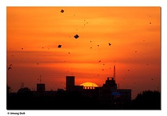 Sunset (Umang Dutt) Tags: light sunset red sky orange india kite black art thread silhouette festival flying interestingness amazing interesting flickr skies darkness image awesome picture competition explore indians nikkor kiteflying dori gujarat ahmedabad uttarayan manja dutt umang uttrayan festivalsofindia explored phudi 70300vr maanja 14thjanuary chandar phirki umangdutt pca1415jan aankhedar patedar tukkal