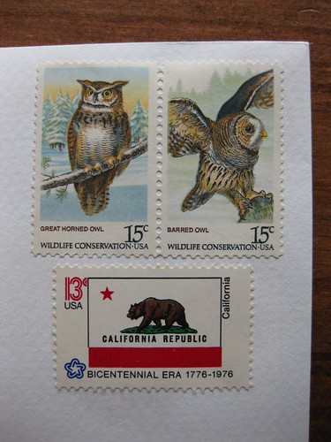 Owls + California