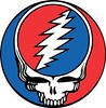 Grateful Dead Steal Your Face - plain