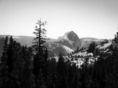 Half Dome (astaarael) Tags: park trees blackandwhite bw mountains rock forest formation yosemite dome half halfdome
