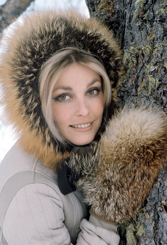 sharontate-frombill