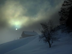 Sound of Silence (Fispace) Tags: blue shadow sun snow tree fog clouds lost switzerland lesmosses chaler vosplusbellesphotos gettyimagessalq1