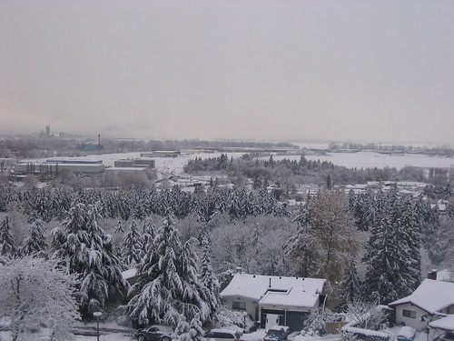 More Snowy Burnaby
