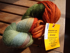 Schaefer Anne Sock Yarn 1