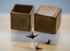 Sadako's Last Wish (WilliamBullimore) Tags: japan origami box crane hiroshima papercrane sadako hiroshimaprefecture origamicrane hiroshimapeacememorial sadakosasaki osakafu hiroshimashi