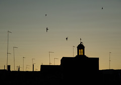 (Angelo's) Tags: sunset wallpaper sky birds tramonto uccelli cielo cupola dome antenne antenna sud grottaglie altosalento