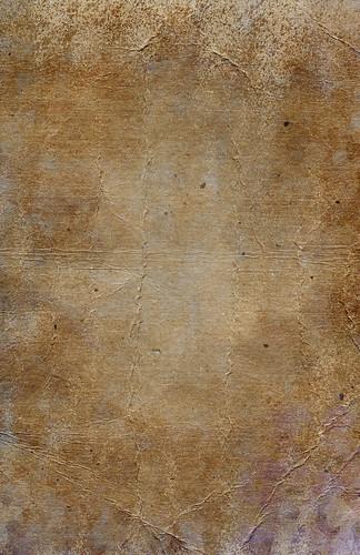 Cardboard Grunge 5