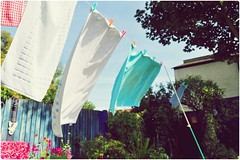 (completedifferentleo) Tags: line towels washing