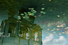 Fishy visions (Chris JL) Tags: red color colour reflection green nature water clouds photo pond russia religion fishes lanscape orthodoxchurch nikond90 nikkor18105mmvr pereslavlmonastery chrisjl