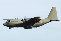 8T-CC C-130K Austrian Air Force (eigjb) Tags: ireland dublin airplane airport aircraft military transport royal airforce lockheed dub hercules raf c130 austrian c1 c130k collinstown eidw 240909 xv292 8tcc