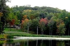 (MidnightPics) Tags: autumn lake newyork fall nature water leaves landscape pond loveit serene dutchesscounty leaveschanging beautifulphoto photolovers naturesheavens midnightpics