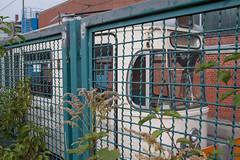 Betriebshof 2, Steinhausen (Wolkenkratzer) Tags: munich münchen tram depot streetcar tramway mtrain steinhausen mwagen einsteinstrase betriebshof2
