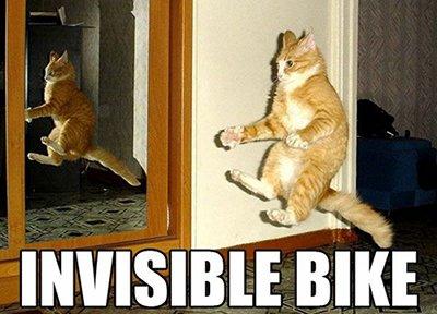 Meme LOLcats