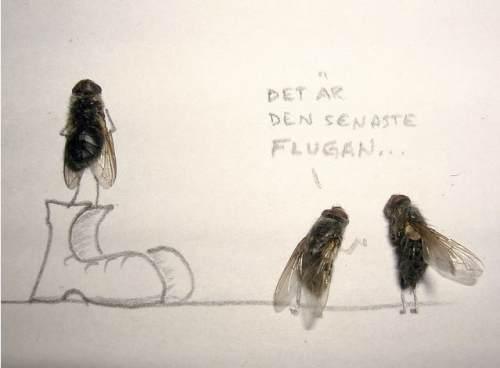 dead-flies-art-8