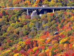 Linn Cove Viaduct in Autumn Splendor (BlueRidgeKitties) Tags: autumn red orange green fall yellow landscape october fallcolor northcarolina blueridgeparkway appalachianmountains roughridge westernnorthcarolina linncoveviaduct southernappalachians ccbyncsa linvilleviaduct canonpowershotsx10is roughridgeoverlook