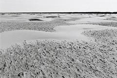 La Lune en Hollande (Goazily) Tags: sol horizon dune sable plage paysbas schiermonnikoog hollande