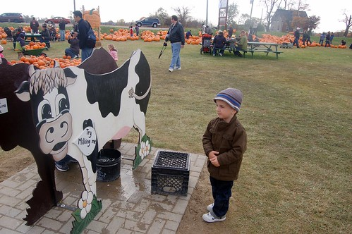 Jacob Eyes the wooden cow