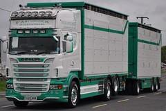 [IRL] Fahy Livestock Scania R620 11-OY-303 (truck_photos) Tags: athlone fullofthepipe irishtruckshow