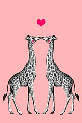 First Kiss - Valentine version (3LambsStudio) Tags: africa pink wild art love animal animals illustration graphicart photoshop neck print design graphicdesign artwork kiss kissing couple vectorart forsale cheek heart graphic antique photoshopped fineart digitalart magenta wallart exotic relationship longneck cheeks giraffes raspberry wildanimal giraffe etsy blush serengeti vectors vector inlove available necks fineartphotography blushing firstkiss lightpink graphicprints pinkcheeks reticulatedgiraffe fineartphoto photoprints photoshopedited photosforsale onetsy blushingcheeks editedinphotoshop graphicprint graphicartprint 3lambsdesign madewithphotoshop editedonphotoshop 3lambsgraphics printworkgraphic