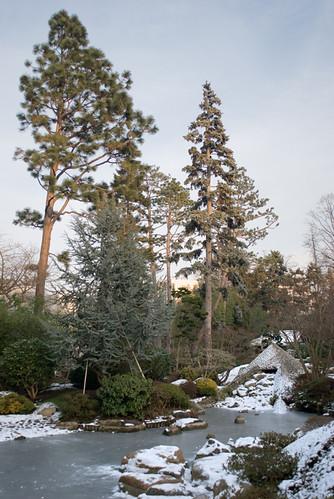 Les jardins d'Albert Kahn IX