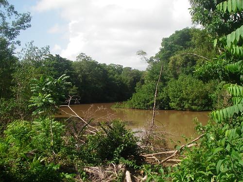 Ortoire River