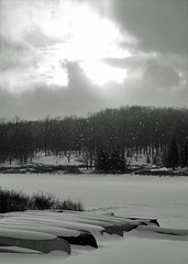 Shine On Me (ginfox) Tags: trees winter light blackandwhite bw sun white lake snow black cold west ice grass virginia frozen blackwhite shine gray wv canoes valley shining cannan ginfox