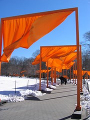 IMG_0022 (DutchAstrid) Tags: new york nyc newyorkcity orange newyork art gates centralpark saffron christo gatesmemory