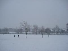 snow day (Jan 2009) - 21