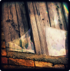 Broken window (Mr.PartyHut ) Tags: reflection broken window glass birds uccelli finestra riflessi rotto appennino viewfinder vetro riflesso fragments refelx frammenti ttv montefalcone mywinners platinumheartaward marcomatteucci