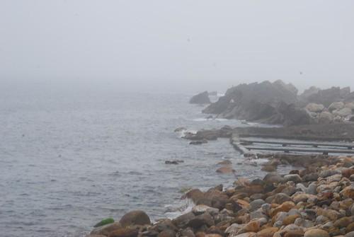 霧濛濛的龍洞灣