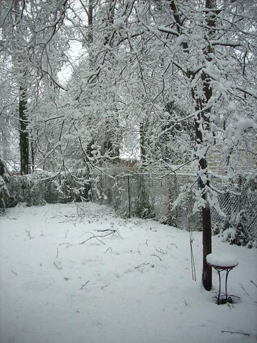 SNOW 2655