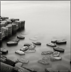 jetty study 2 ('eliat) Tags: jetty hasselblad step descending fujiacros hc110b orascendingifyoureadfromrighttoleft