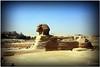 Great Sphinx of Giza (AndreaKamal.com) Tags: summer history sphinx lion egypt cairo giza ägypten egitto gizeh مصر الجيزة أبوالهول أبوالهولالعظيمفيالجيزة