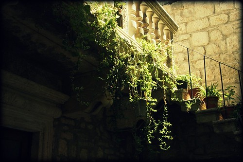 peeking inside a Korcula courtyard! / Ev