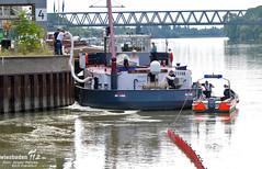 Öl auf Rhein bei Amöneburg 03.08.09