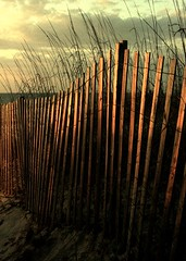 (FLSmith) Tags: ocean beach sunrise fence dawn sand dune northcarolina seagrass carolinabeach abigfave