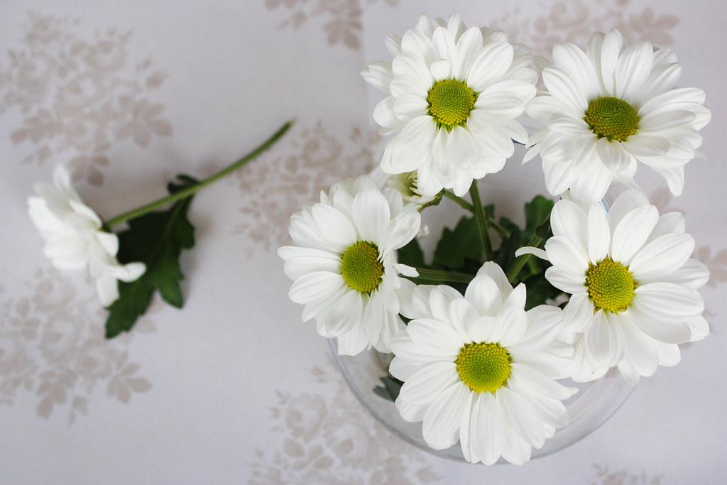 White flowers still life