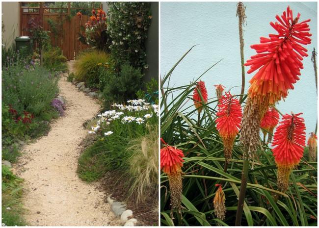 gardenspiration1
