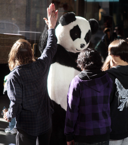 High-Fiving Panda by ~wesa~